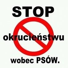 Stop okrucieństwu wobec psów...