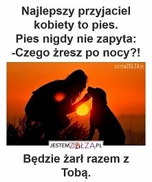Pies <3