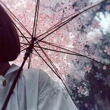 w te deszczowe dni spod parasola zapraszam na bloga: cuschi.blogspot.com