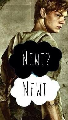 Newt!! ❤