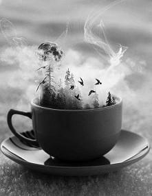 Może komuś filiżankę kawy ?