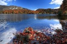 Słowenia, jezioro Bohinj