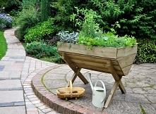 Ciekawa konstrukcja na kwiaty do ogrodu