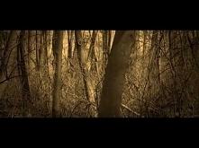 Tadek-Żołnierze Wyklęci(Klip)