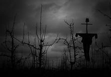 """""""Strach tnie głębiej niż miecze"""" - George R.R. Martin"""