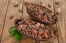 Ziarna kakaowca!  Surowe ka...