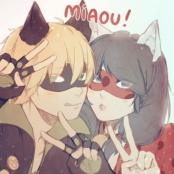Biedronka i Czarny Kot