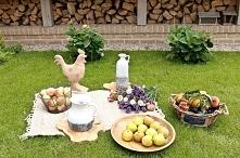 dekoracje ogrodowe, piknik, misy na owoce, ceramiczne wazony, kosze wiklinowe...
