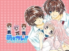 Manga: Moe Kare!! Hikaru Wakamiya od dawna marzy o chłopaku, który byłby zupe...