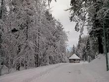 Zawsze w zimę robi się ciemno szybciej, właśnie dlatego w tym jest tyle magii. <3