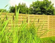 Dywan z trawy na tarasie i ...