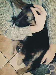 Moja kochana psinka ❤❤
