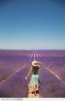 Piękne zdjęcie! ❤