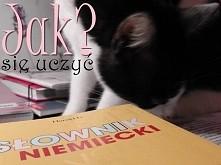 moje 7 porad na temat nauki języków obcych w szkole ;) zapraszam do czytania ;) (niektóre porady można także zastosować ucząc się w domu)
