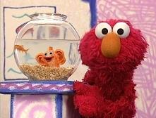 """Świat Elmo"""