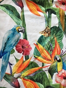 tkanina print papuga