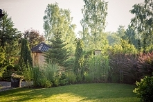 Cudnie pozarastane :) uwielbiam takie zakątki w ogrodzie :)