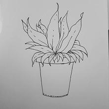 Prosty rysunek roślinki ♥