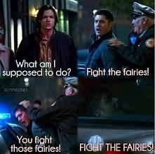 FIGHT THE FAIRIES!!!!