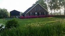 Holendersko... Czyż ta prostota ogrodu nie urzeka?