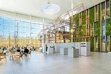 Nowoczesne wnętrze biura, lekka ażurowa konstrukcja, nowoczesne biuro, zieleń...
