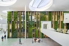 Nowoczesne wnętrze biurowe to zielone wnętrze! Zobacz jak zaprojektować ziele...