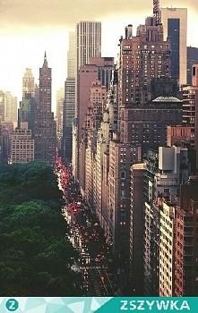 Miasto, duże miasto...