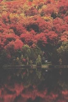 Tam właśnie mieszkać i pić kawę porankami letnimi :) oraz popołudniami jesiennymi :)