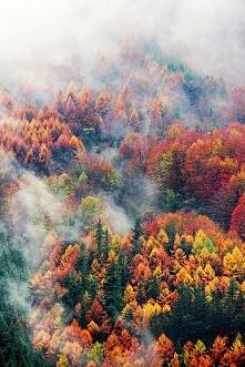 Jesienny krajobraz :)