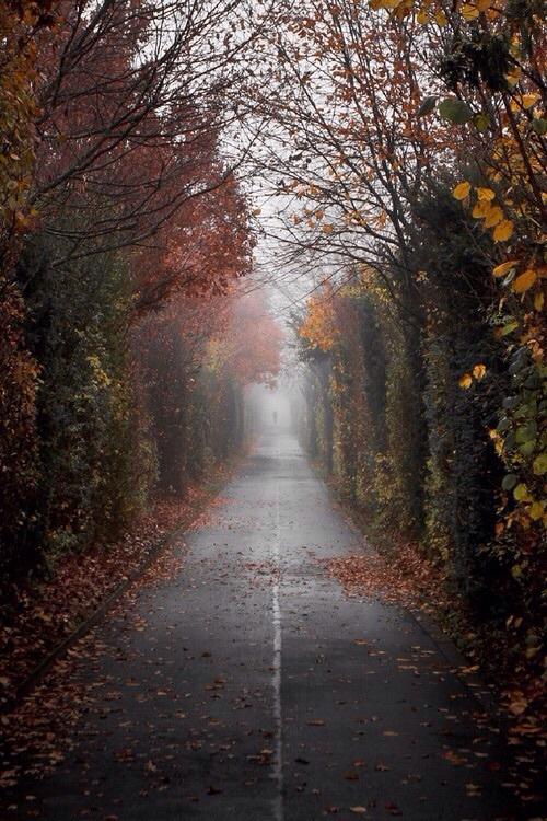 Ahh, ta ponura jesienna pogoda...
