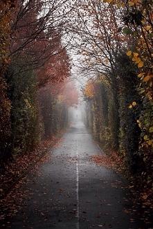 Ahh, ta ponura jesienna pog...