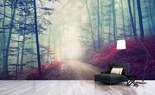 Jesienny krajobraz na fototapecie