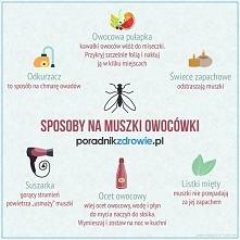 Sposoby na muszki owocówki
