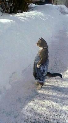 zima sie zbliza :-D