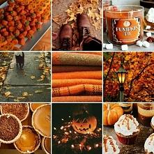 Za co kochacie jesień:)?