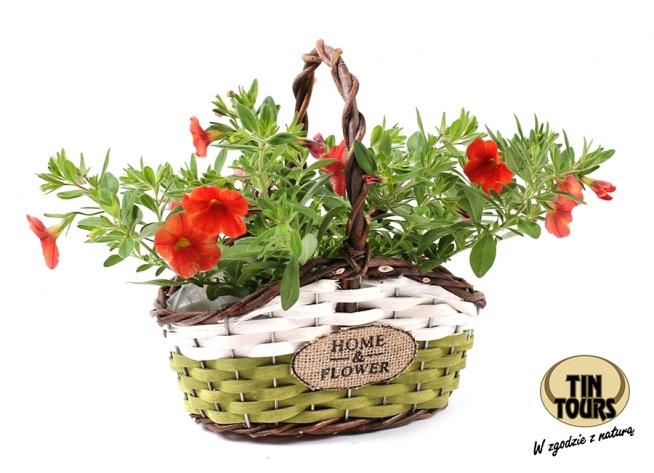Biało - zielony koszyk wiklinowy na kwiatki od koszyki.net.pl