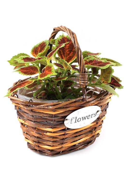Koszyk wiklinowy na kwiatki we wszystkich odcieniach brązu ozdobiony metalową blaszką od koszyki.net.pl