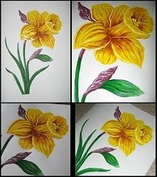 Żonkil, kwiat nadziei, farb...