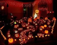 Halloween - zobacz dekoracj...