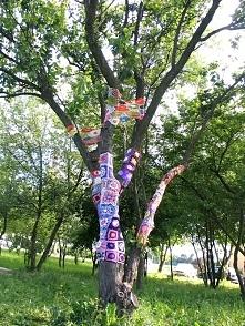 Yarn Bombing Polska. Drzewo w Luboniu. Wykonanie: Nieformalna Grupa FANABERIE z Lubonia.
