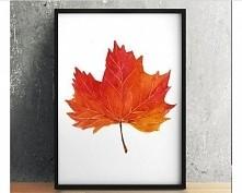 Estetyczna jesień