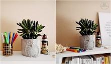 Dodatki i kwiaty