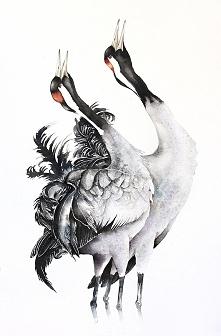 Żurawie zwyczajne - plakat, reprodukcja 50x70cm