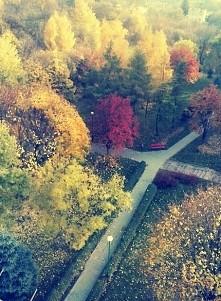 Uroki jesieni;)