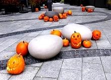 Kto jest za Halloween w Pol...