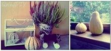 Moja jesienna dekoracja :)