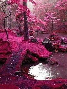 Bridges Park - Irlandia