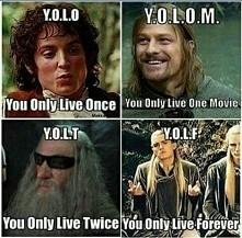 Y.O.L. ...