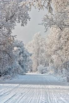 Tęsknię za taką zimą.