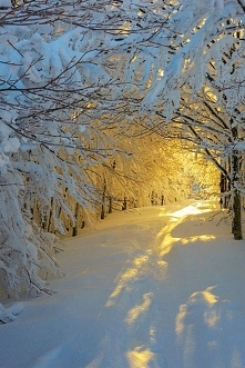 Cudowna zima.